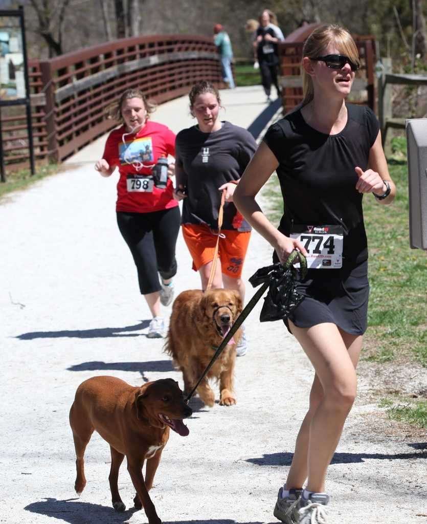 Help benefit the Forest County Humane Society while running with your pup in the Run for the Paws 5K Run/ Walk.