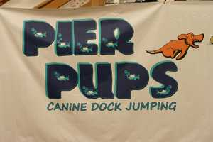 Pier Pups has been around since 2007.