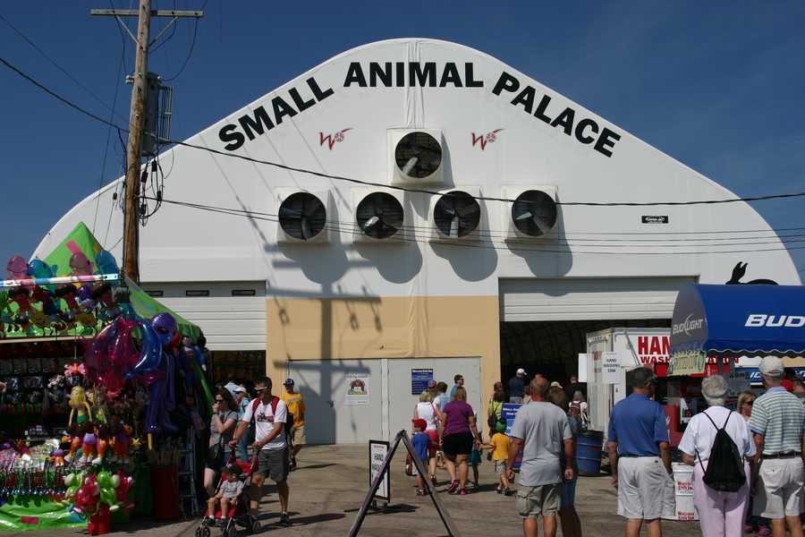 All events took place inside the Small Animal Palace at the Wisconsin State Fair.