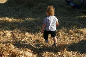 Playing in the hay is always fun for the kids.