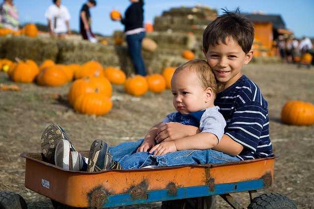 Jim's Pumpkin Farm -Lovers Ln Germantown