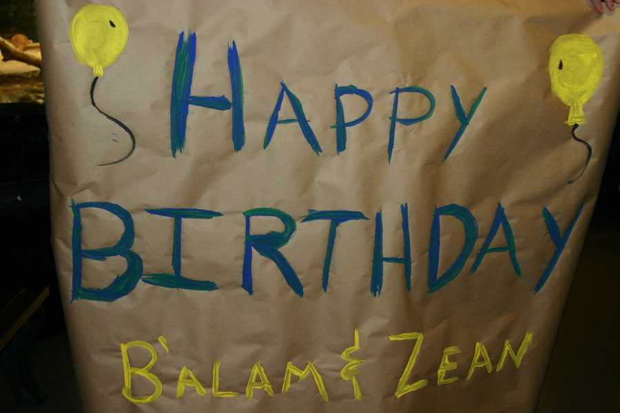 A birthday sign was made with non-toxic paint and hung in their enclosure.