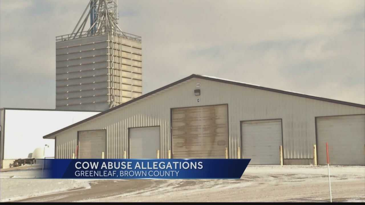 A Wisconsin dairy farm fired two workers and banned a third from handling animals after an undercover video showed them hitting, whipping and kicking animals.