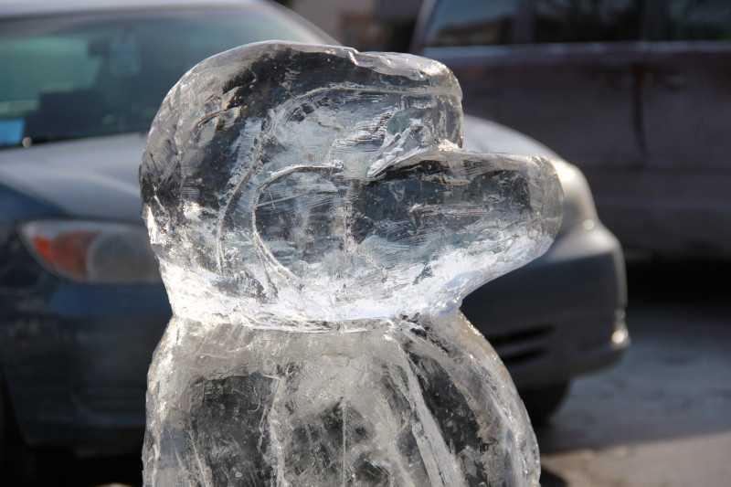 "Title: ""Penguin Snowboarding"""