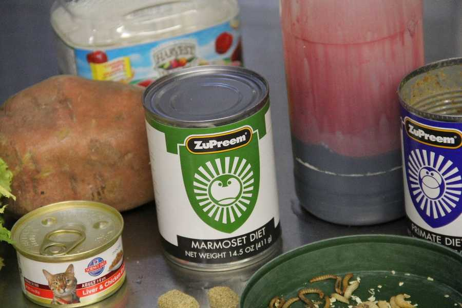 Both consumer canned cat food and that designed specially for zoos are used.