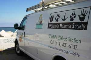 For for more information about the WHS and the Wildlife Rehabilitation Center click here.