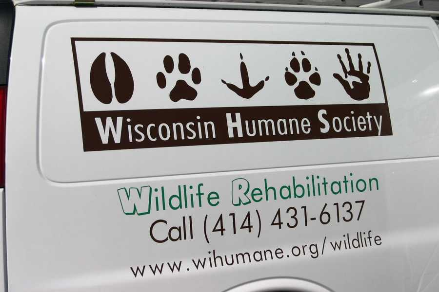 More than 5,000 animals are cared for annually at the Wildlife Rehabilitation Center.