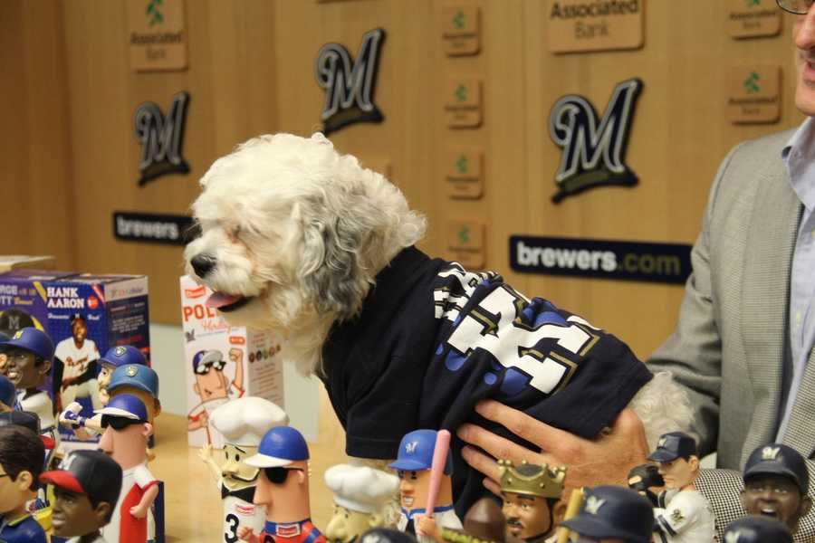 Brewers players have stepped forward and also will contribute to the fund.
