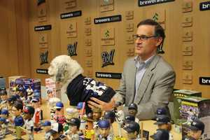 The Brewers have worked closely with the Arizona and Wisconsin Humane Societies since that first day, and their staff provided counsel on how best to care for Hank's basic needs as he adjusted to his new surroundings.