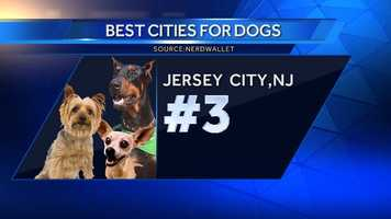 Jersey City may not have as many dog parks as some of the other places on this list, but it scores higher in the walkability than almost anywhere else.