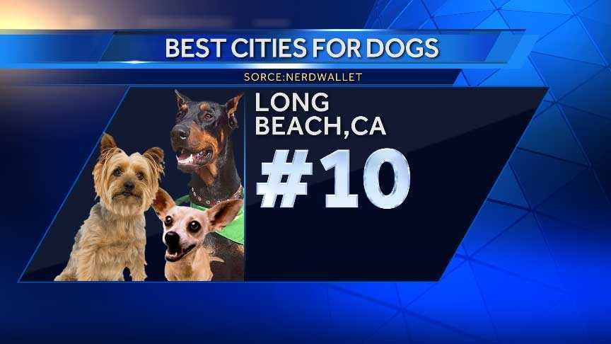 Dog owners in this neighboring city of Los Angeles enjoy great walkability as well as access to off-leash dog parks.