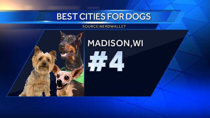 Madison is home to a high number of off-leash dog parks per 100,000 residents and the average cost of a visit to the vet is the second lowest of the top ten cities.