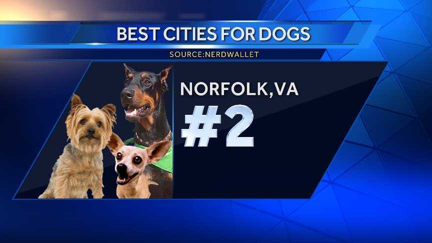 Norfolk has just over five off-leash dog parks per 100,000 residents -- the second highest mark of all cities.