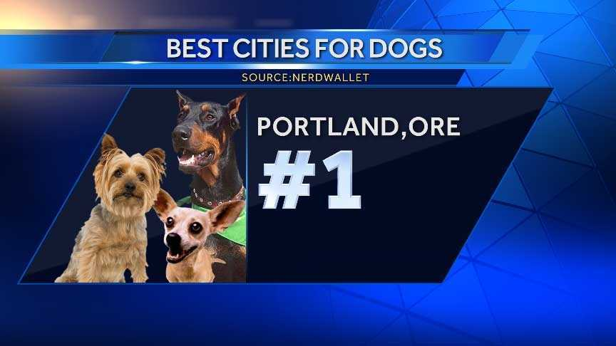 Portland tops our list of best cities to have a dog for the second-straight year. Along with a walkable layout, the city has more dog parks per 100,000 residents than anywhere else. Portland is home to several pet adoption centers and shelters.
