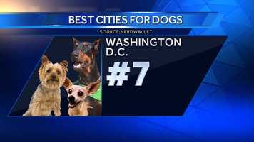 The nation's capital ranks highly as a place to have a dog primarily due to the fact that it is a very walkable area. D.C. is home to several animal shelters.