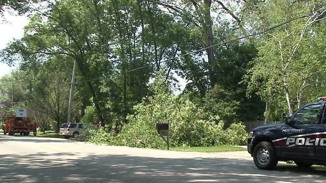 Tree falls on jogger in Fox Point