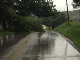 Tree down across Merrill Hills Rd near Sunset