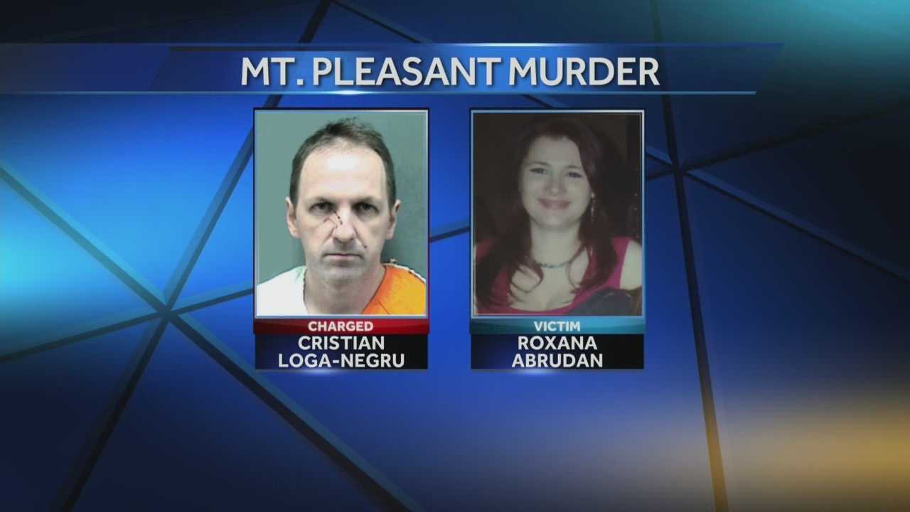 Cristian Loga-Negru is charged with killing his estranged wife, Roxana Abrudan, with a hatchet last month. Today he faces a competency hearing.