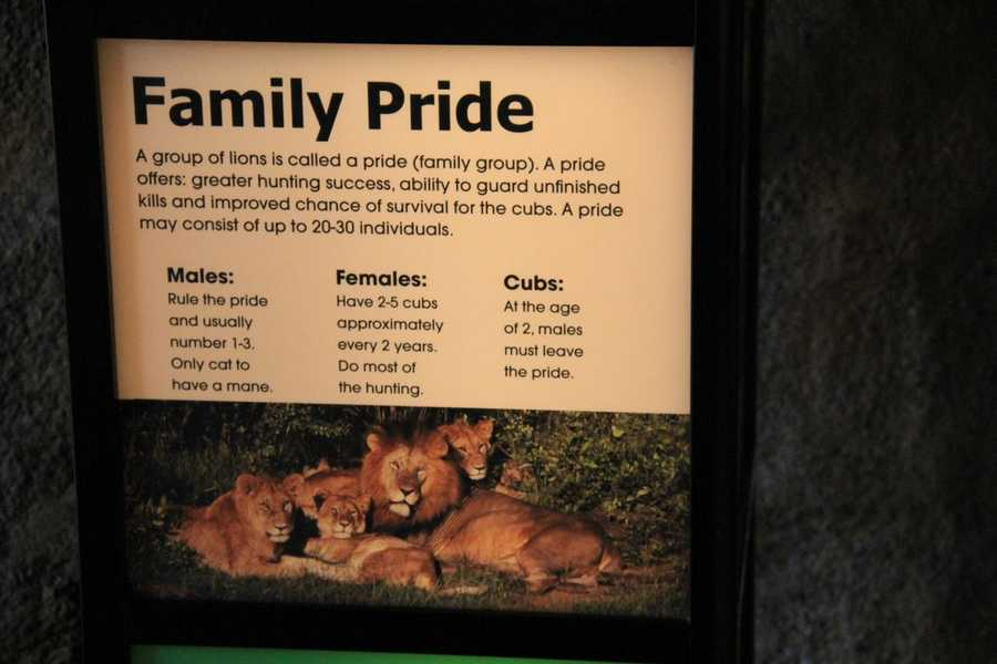 The Milwaukee County Zoo now had 3 females and 1 male.