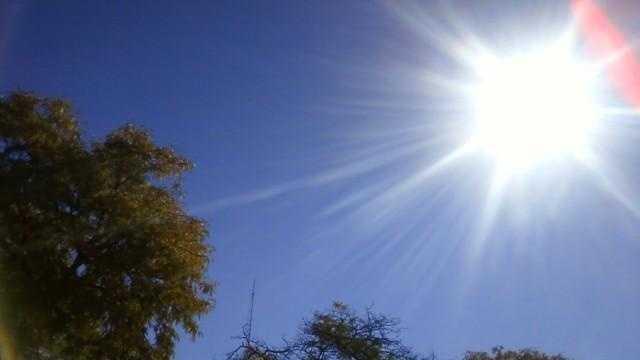 Sunshine - 25356206