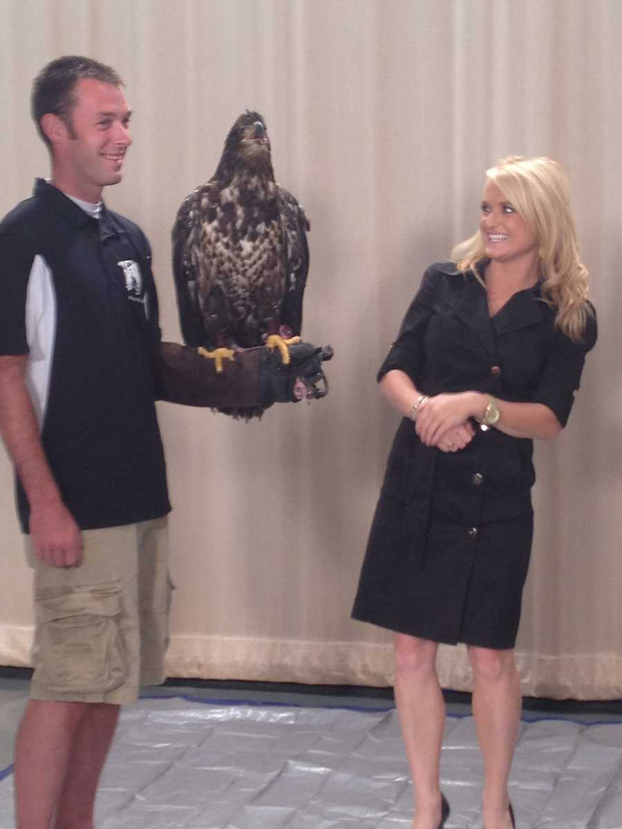WLKY's Lexy Scheen is a little nervous about the eagle.