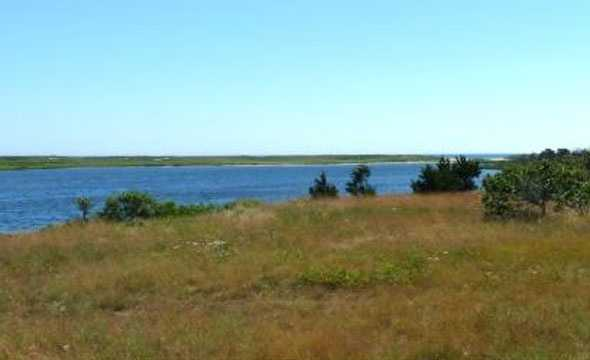 The property in West Tisbury is virtually undeveloped, except for a single cottage.