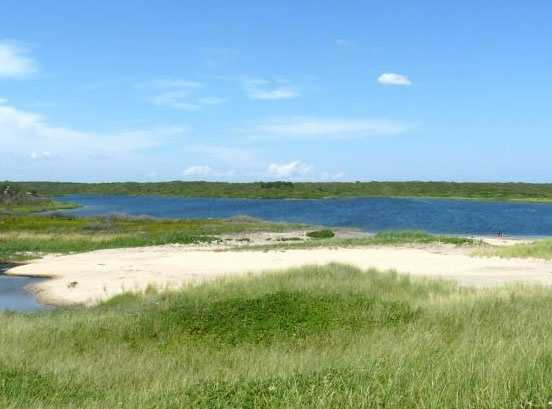 The land includes more than 1,000 feet of private beachfront.