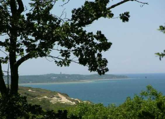 If $92 million is too steep, a 74-acre estate in Chilmark is available for $30,000,000.