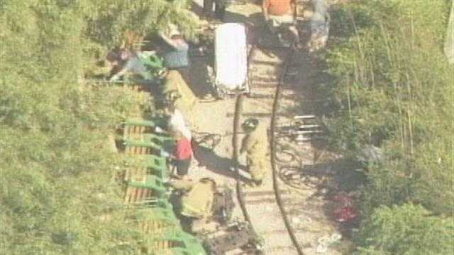 An attorney for the Louisville Zoo says the facility is immune to lawsuits over a 2009 train derailment.