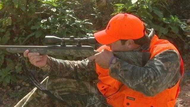 Hunting, rifle