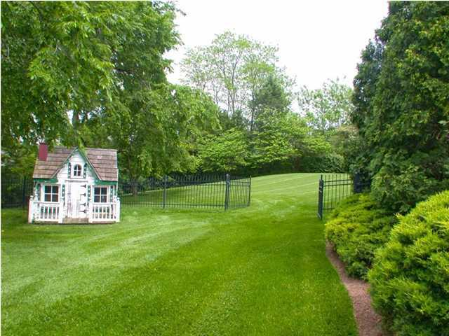 Beautifully groomed backyard.