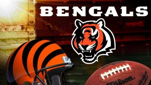 Given the choice of the Chicago Bears, Cincinnati Bengals, Dallas Cowboys, Green Bay Packers, Indianapolis Colts, Pittsburgh Steelers, St. Louis Rams and Tennessee Titans, the Bengals are the favorite team of Kentucky voters with 25%.