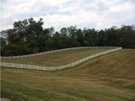 First taste of the outdoor property for horses.