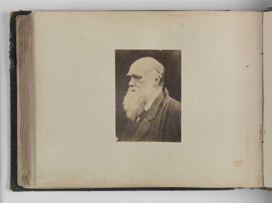 Feb. 12: Darwin Day :  You thought Lincoln was the only great man born today?! Celebrate Charles Darwin's birthday by reading On the Origin of Species while exploring the Galapagos Islands.