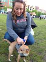 Everyone enjoyed the nice weather and music from The Pass as part of Kentucky Derby Festival Happytail Hour, coordinated by Metro Animal Services.