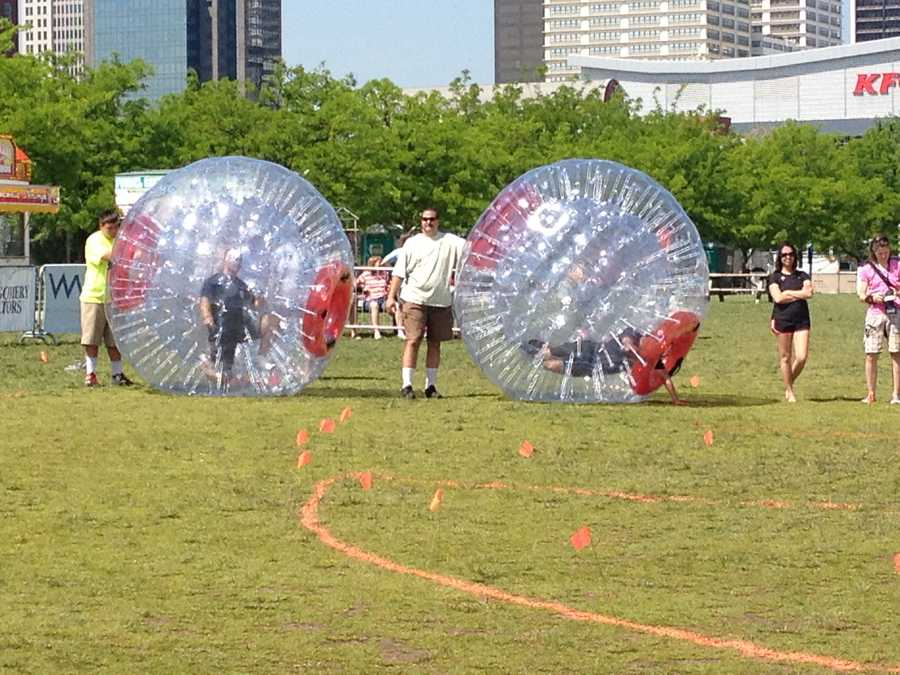 After the obstacle course, the teams then have to run around in the hamster balls.