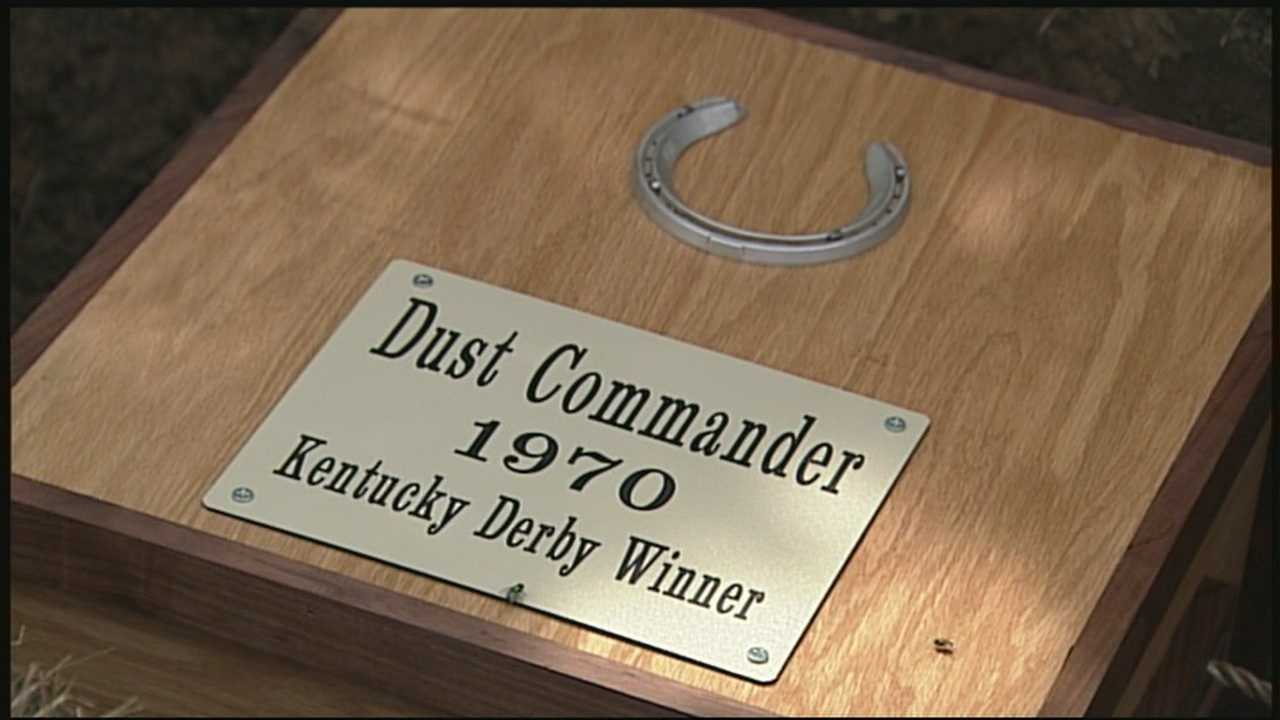 His race is described as one of the most spectacular in Kentucky Derby history. Today, dust commander was finally brought back home after his grave was lost for more than a decade.