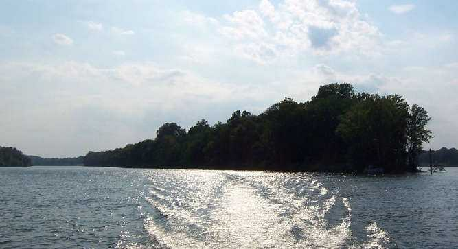 Wolf Island is a 116 acre pristine island available on the Tennessee River near historic Savannah, Tenn.