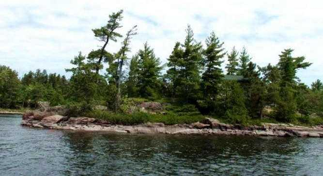 The island is nicely treed with pines and has granite shoreline.