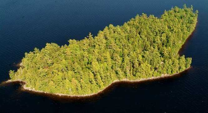 The island's tree population is mostly pine and white birch with scattered wild blueberry bushes.