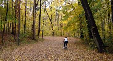Wander through Iroquois Park: Another of Louisville's Frederick Law Olmsted-designed parks with more than 785.85 acres and open to the public.Location: 5216 New Cut Rd., 40214