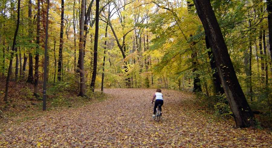 Wander through Iroquois Park: Another of Louisville's Frederick Law Olmsted-designed parks with more than 785.85 acres and open to the public.Location:5216 New Cut Rd.,40214