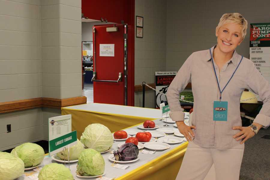 What's a state fair without award-winning, giant food? Ellen takes a look at a cabbage bigger than your head.