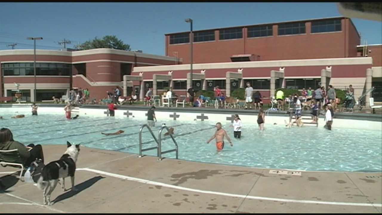 The Jewish Community Center hosts its second annual Doggie Dip fundraiser.