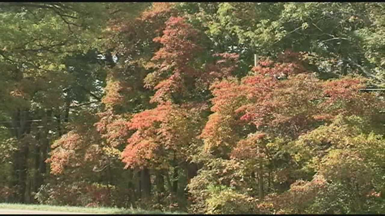 It's peak tourism season in Brown County as the leaves start changing colors.