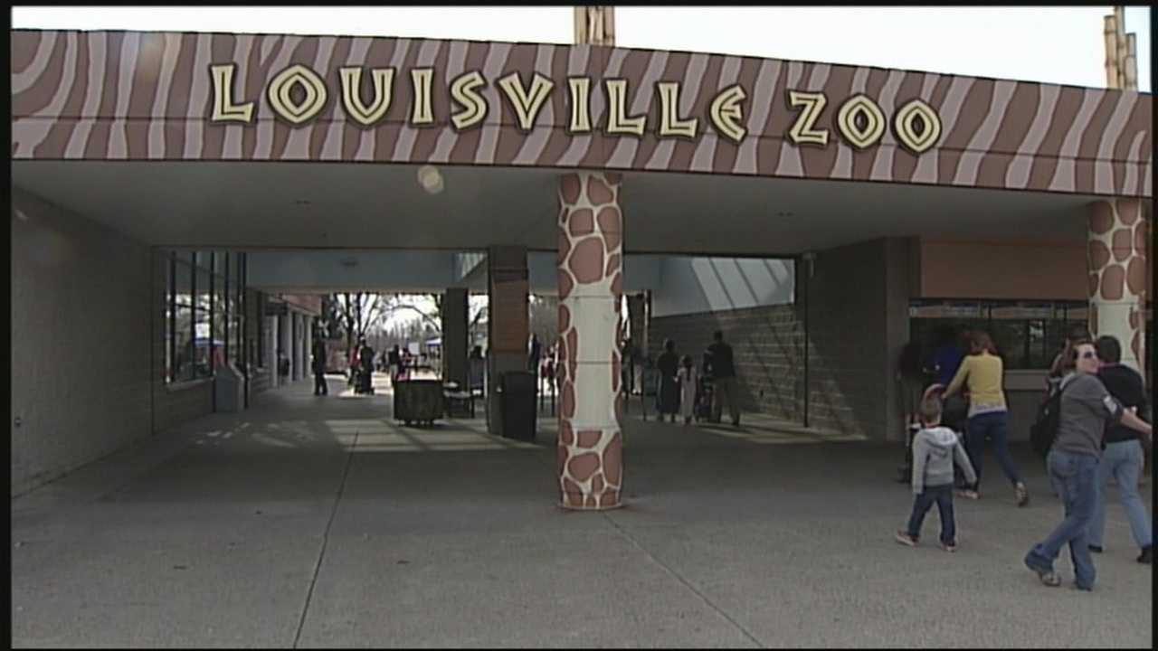 The decision of the Louisville Zoo to possibly begin selling beer has a lot of people sounding off.