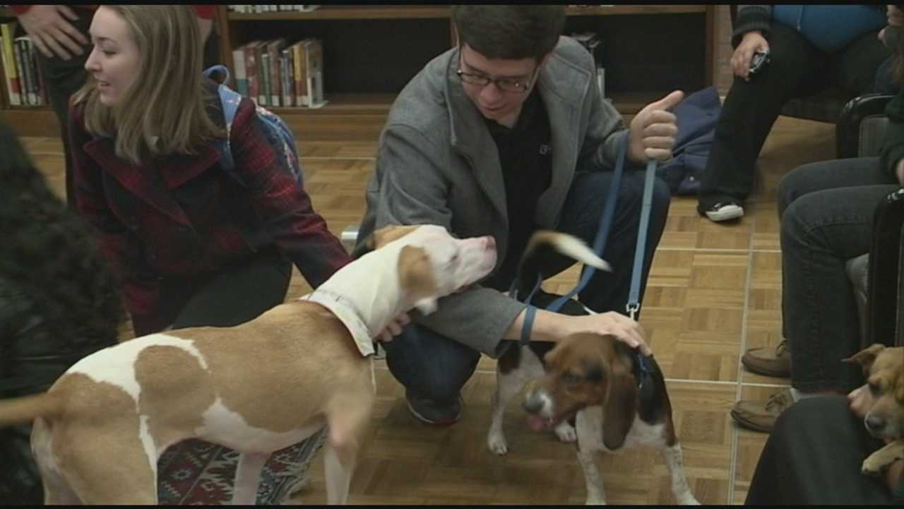 Dogs are being used at the University of Louisville to help students relieve the stress of finals.