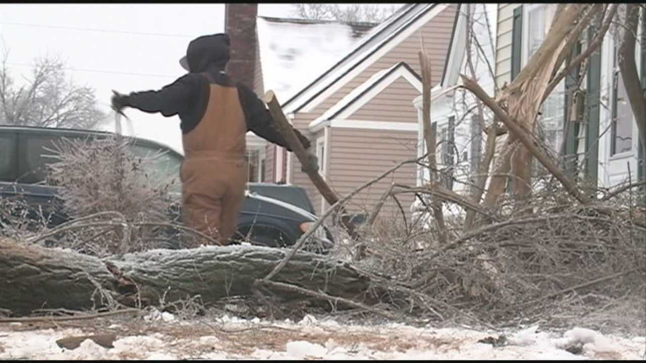 Trees knocked down in this week's ice storm are keeping cleanup crews busy Wednesday.