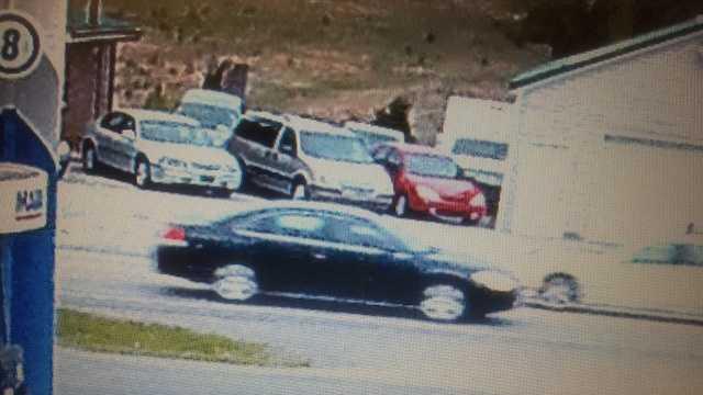 Impala Surveillance pic.jpg