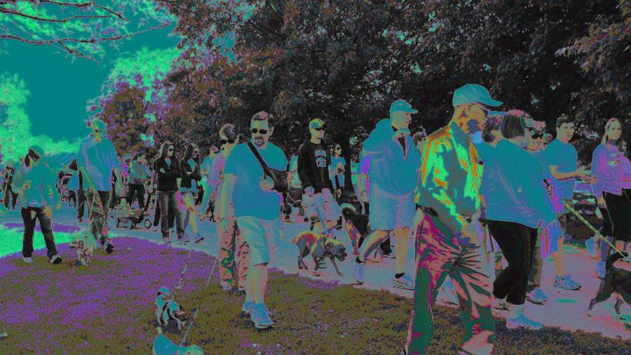 Waggin' Trail dog walkers